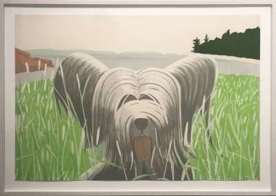 Alex Katz, Dog at Ducktrap, 1975-76, lithograph in ten colors, 29.25 x 43 x 0 inches: image, 34 x 48 x 1.5 inches: frame, Edition of 90