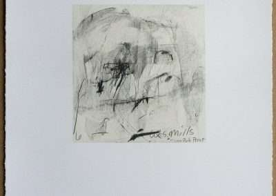 Wes Mills, 6. cavity, 1994, waterless lithograph, 8.25 x 8 inches: image, 19.25 x 16 inches: paper, Edition of 18, Published by 21 Steps Editions