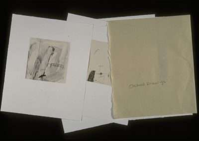 Orchard Drawings portfolio of 9 waterless lithographs, Published by 21 Steps Editions