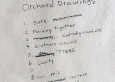 cover page detail of the Orchard Drawings portfolio of 9 waterless lithographs, Published by 21 Steps Editions