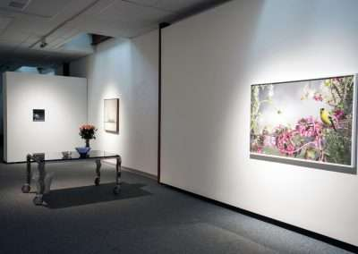 Installation View: Jason DeMarte and Matthew McConville exhibition Richard Levy Gallery
