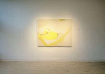 Installation View: Yuh-Shioh exhibition at Richard Levy Gallery