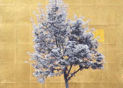 Daniel Ballesteros, Gold Leaf Tree No. 048, 2018, gold leaf on archival pigment print, 40 x 32 inches: image, Edition of 3