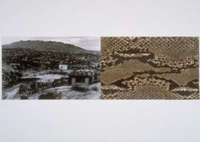James Drake, Valley of the World, 1994, waterless lithograph with python skin, 18 x 35 inches, Edition of 12, Published by 21 Steps Editions, SOLD OUT