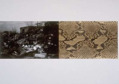 James Drake, Valley of the World, 1994, waterless lithograph with python skin, 18 x 35 inches, Edition of 12, Published by 21 Steps Editions