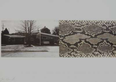 James Drake, Valley of the World, 1994, waterless lithograph with python skin, 8 x 25 inches: image, 18 x 35 inches: paper, Edition 5/12
