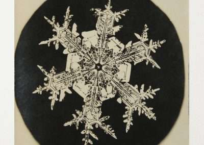 Wilson Bentley, Snowflake, 1888-1927,  Gold-Chloride toned microphotograph, 4 x 3 inches: image