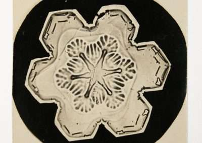 Wilson Bentley, Snowflake, 1927, Gold-Chloride toned microphotograph, 4 x 3 inches: image