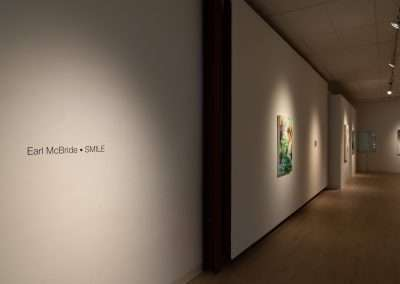 Installation View: Earl McBride exhibition at Richard Levy Gallery