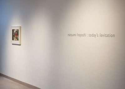 Natsumi Hayashi, Levitations at Richard Levy Gallery